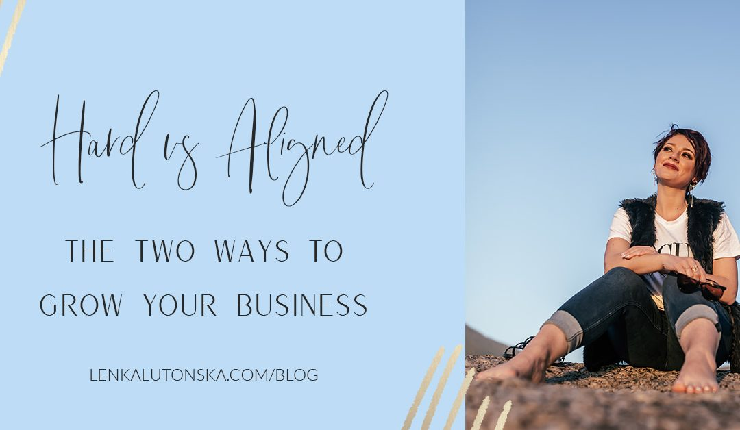 Grow your business the HARD way or the ALIGNED way!